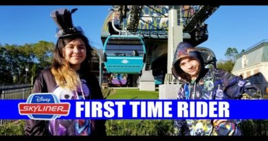 Disney Skyliner First Time Rider Hollywood Studios – Epcot – Caribbean Beach – POP and ART